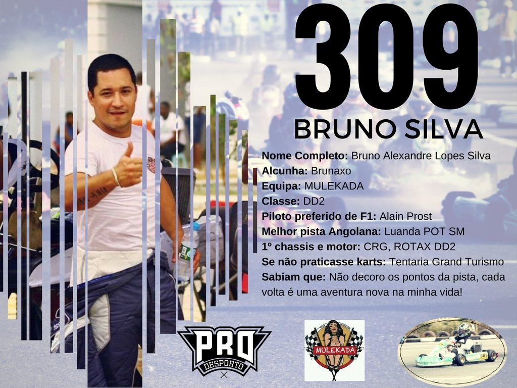 309_Bruno Silva Profile